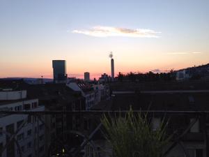 Unvergessliche großartige Momente: Grillparty auf dem Dach von Zürich