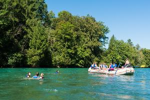 Unforgettable great moments: Boat trip from Thun to Bern with barbecue