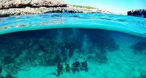 Unforgettable great moments: Discover the Underwater World of Mallorca on a Discovery Scuba Dive