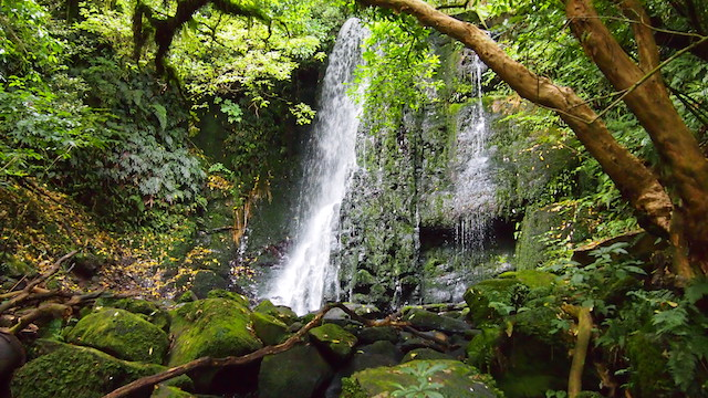 A great waterfall in the middle of the jungle. Sustainable Traveler support the diversity and natural heritage.